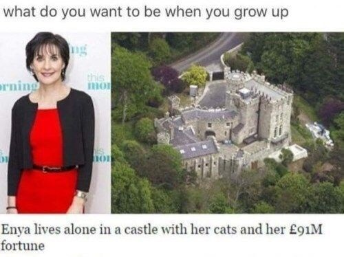 Funny meme about how Enya lives alone in a castle with her cats