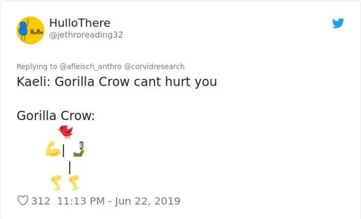 Text - HulloThere Hull @jethroreading32 Replying to @afleisch anthro @corvidresearch Kaeli: Gorilla Crow cant hurt you Gorilla Crow: SS 312 11:13 PM - Jun 22, 2019