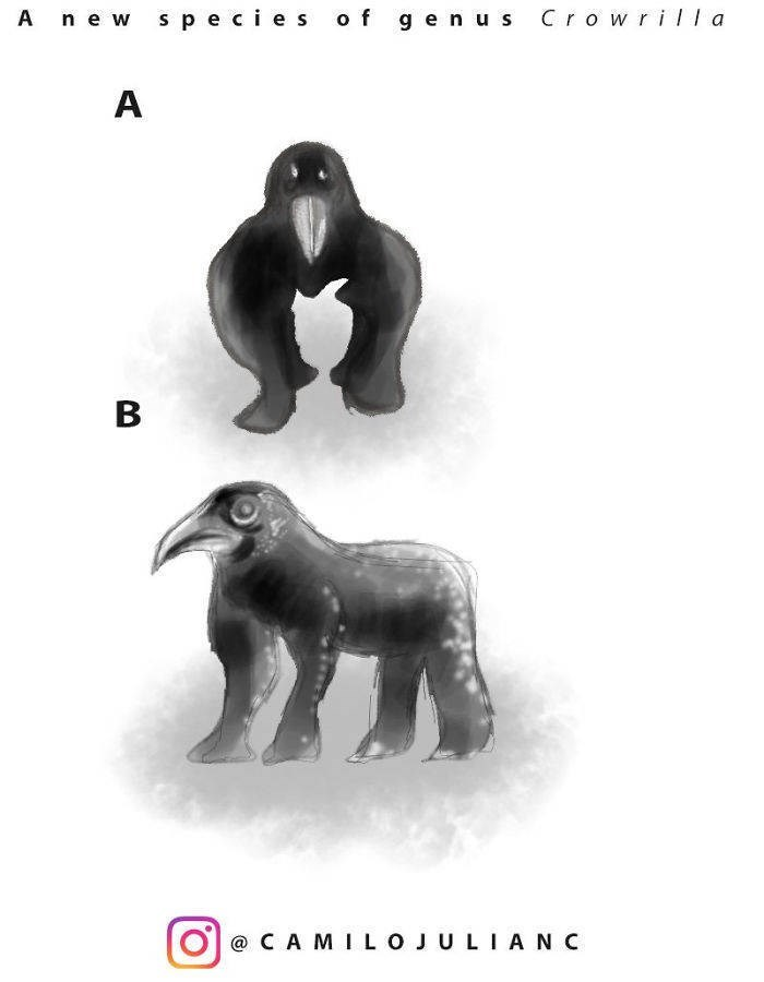 Animal figure - s pecies of gen us ill a Anew Crow A B @ C A MILOJULIA N C