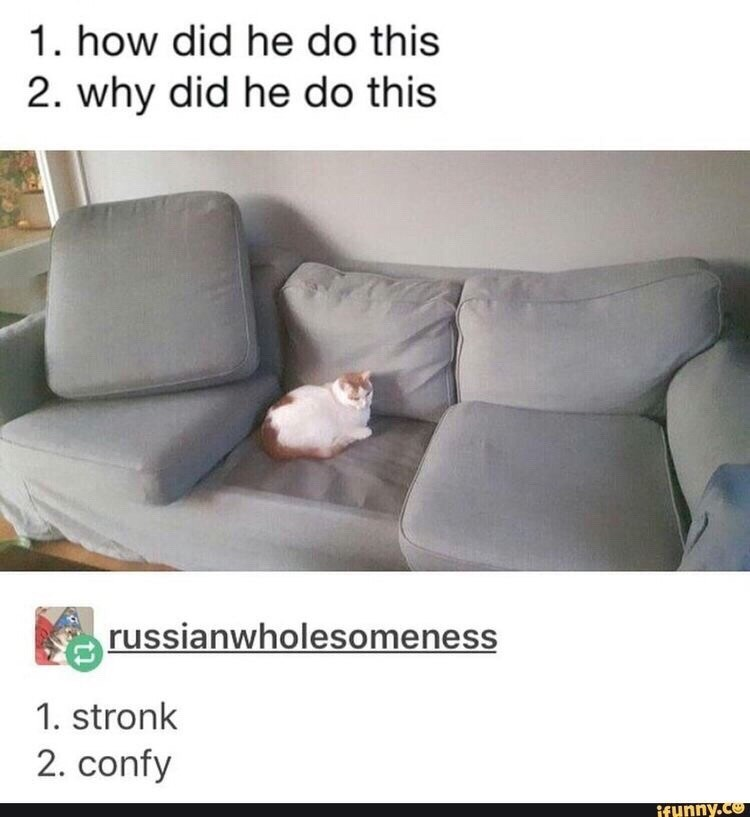 random meme - Furniture - 1. how did he do this 2. why did he do this russianwholesomeness 1. stronk 2. confy ifunny.co
