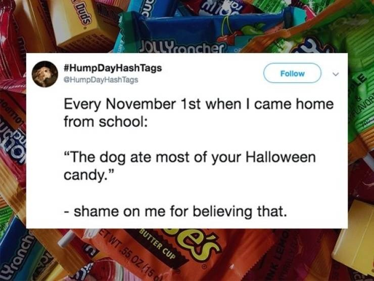 """Text - JOLLYOncher #HumpDayHashTags HumpDayHash Tags Follow Every November 1st when I came home from school: LAVOR """"The dog ate most of your Halloween candy."""" shame on me for believing that. BUTTER CUP ETWT 55 OZ (15 nc es Duds CA LOLLIPO LYranch"""