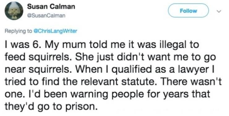 Text - Susan Calman Follow @SusanCalman Replying to @ChrisLangWriter I was 6. My mum told me it was illegal to feed squirrels. She just didn't want me to go near squirrels. When I qualified as a lawyer I tried to find the relevant statute. There wasn't one. I'd been warning people for years that they'd go to prison