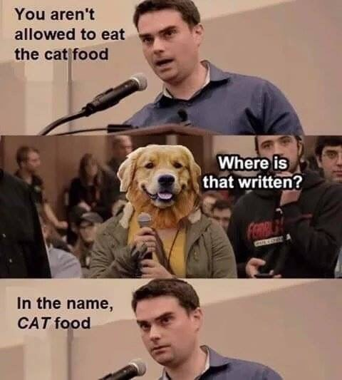 Meme - Dog - You aren't allowed to eat the cat food Where is that written? FORA In the name, CAT food