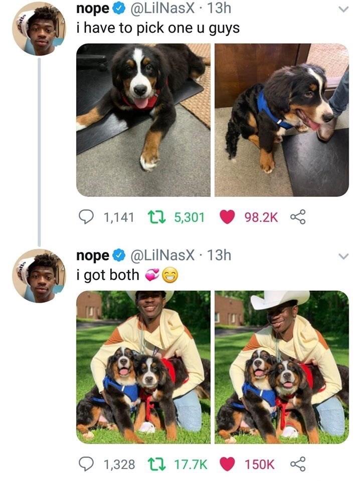 Meme - Dog - nope@LilNasX 13h i have to pick one u guys 1,141 5,301 98.2K nope@LilNasX 13h i got both 1,328 17.7K 150K