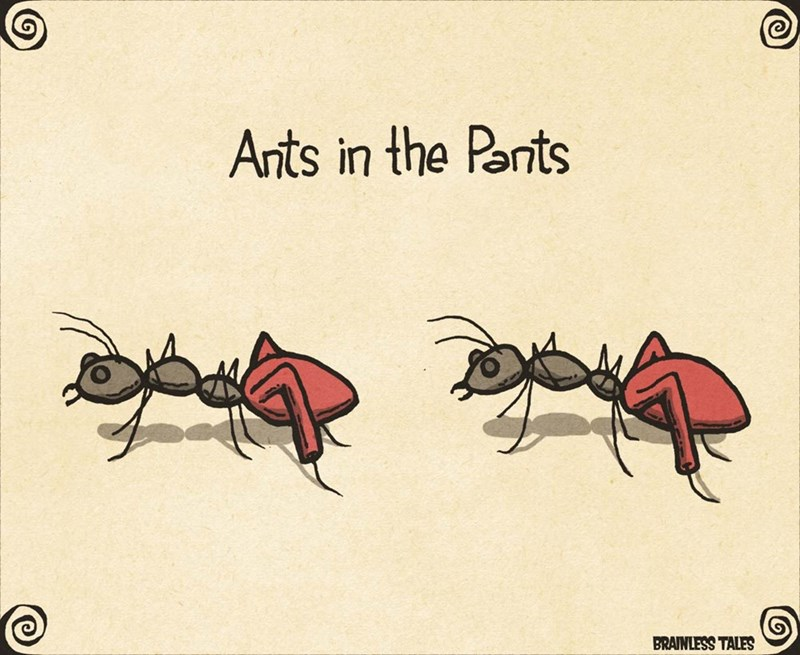 Insect - Ants in the Parts BRAINLESS TALES