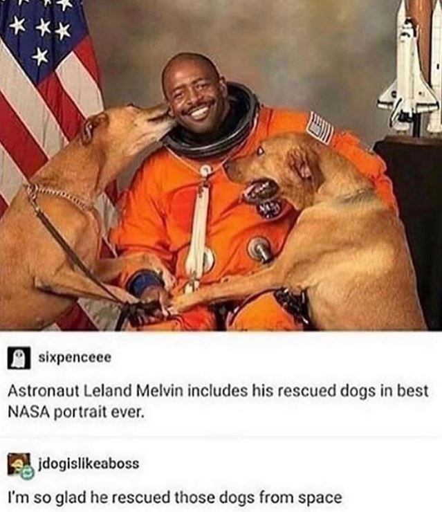 Dog meme - sixpenceee Astronaut Leland Melvin includes his rescued dogs in best NASA portrait ever. jdogislikeaboss I'm so glad he rescued those dogs from space