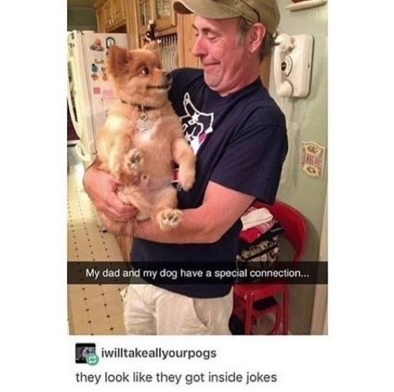 Dog meme Selfie - My dad and my dog have a special connection... iwilltakeallyourpogs they look like they got inside jokes