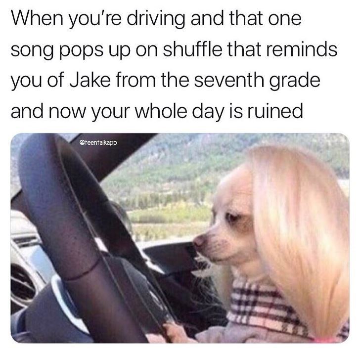 Dog meme - When you're driving and that one song pops up on shuffle that reminds you of Jake from the seventh grade and now your whole day is ruined @teentalkapp