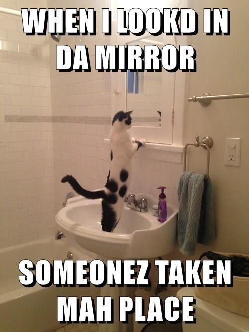 Internet meme - WHEN I LOOKD IN DA MIRROR SOMEONEZ TAKEN MAH PLACE