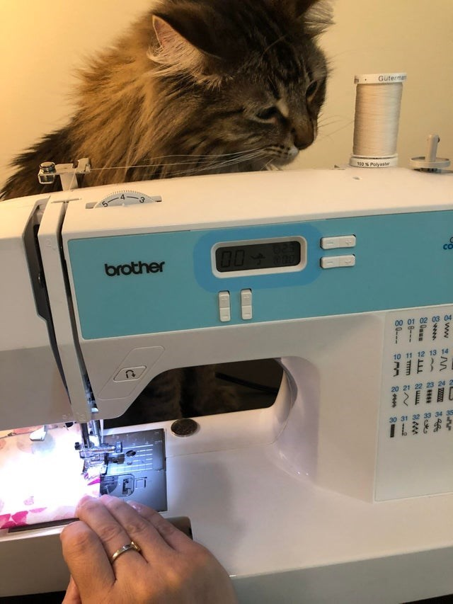 Sewing machine - Guterma s0 % Polyaster brother co FIFT 00 01 02 03 04 10 11 12 13 14 IES 20 21 22 23 24 2 30 31 32 33 34 35 52 wwe