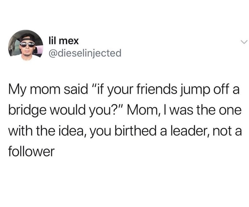 "meme - Text - lil mex @dieselinjected My mom said ""if your friends jump off a bridge would you?"" Mom, I was the one with the idea, you birthed a leader, not a follower"