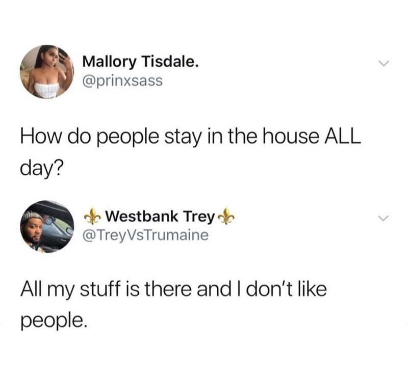 meme - Text - Mallory Tisdale @prinxsass How do people stay in the house ALL day? Westbank Trey @TreyVsTrumaine All my stuff is there and I don't like реople.