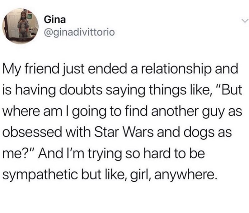"meme - Text - Gina @ginadivittorio My friend just ended a relationship and is having doubts saying things like, ""But where am I going to find another guy obsessed with Star Wars and dogs me?"" And I'm trying so hard to be sympathetic but like, girl, anywhere."