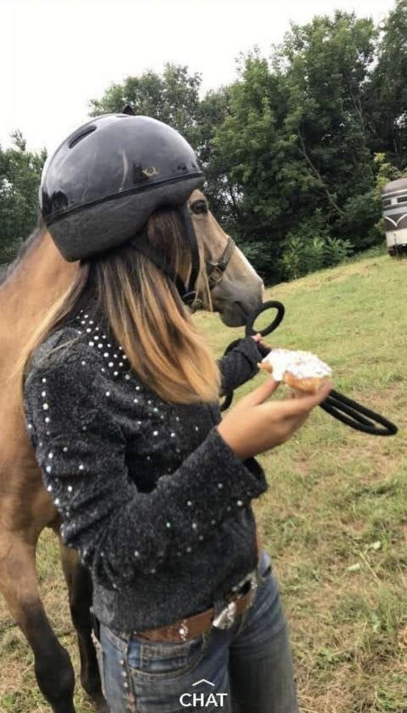 girl's face is a horse