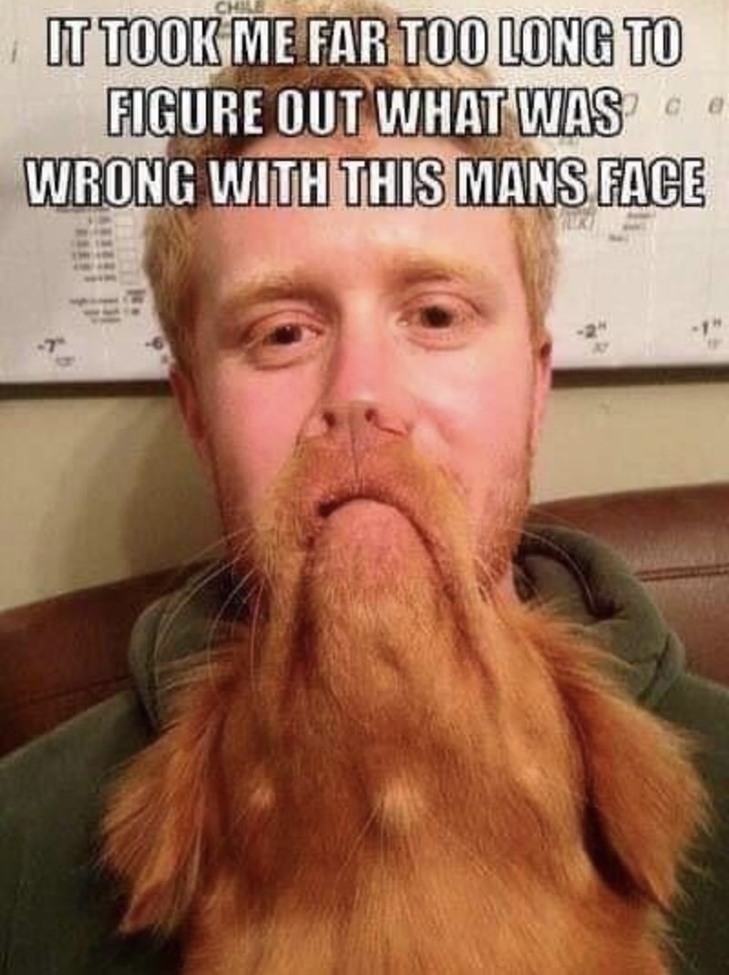 wtf pic - Facial hair - IT TOOK ME FAR TOO LONG TO FIGURE OUT WHAT WAS WRONG WITH THIS MANS FACE