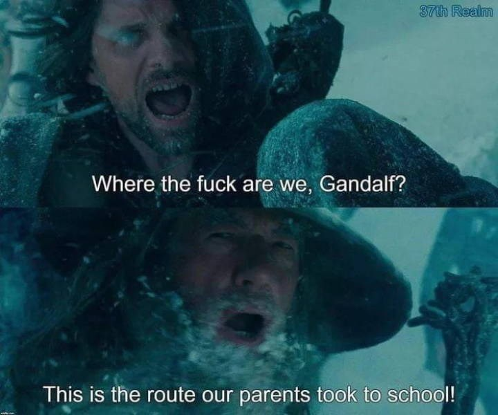 Organism - 37th Realm Where the fuck are we, Gandalf? This is the route our parents took to school!