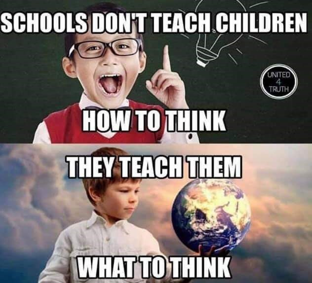 Meme - Photo caption - SCHOOLS DON'T TEACH CHILDREN UNITED TRUTH HOW TO THINK THEY TEACH THEM WHAT TO THINK