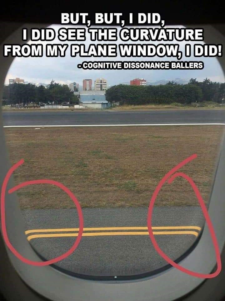 Meme - Asphalt - BUT, BUT, I DID, I DID SEE THE CURVATURE FROM MY PLANE WINDOW, O DID! aCOGNITIVE DISSONANCE BALLERS