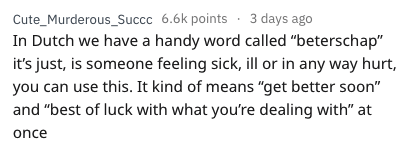 """english language - Text - Cute_Murderous_Succc 6.6k points 3 days ago In Dutch we have a handy word called """"beterschap"""" it's just, is someone feeling sick, ill or in any way hurt, you can use this. It kind of means """"get better soon"""" and """"best of luck with what you're dealing with"""" at once"""