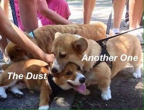 Meme - Dog - Another One The Dust