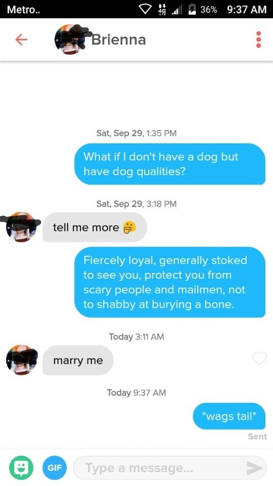 """tinder funny - Text - t Metr.. 36% 9:37 AM Brienna Sat, Sep 29, 1:35 PM What if I don't have a dog but have dog qualities? Sat, Sep 29, 3:18 PM tell me more Fiercely loyal, generally stoked to see you, protect you from scary people and mailmen, not to shabby at burying a bone. Today 3:11 AM marry me Today 9:37 AM """"wags tail* Sent Type a message... GIF"""
