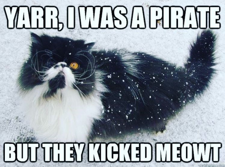 Cat - YARR,IWAS A PIRATE BUT THEY KICKED MEOWT quitkmee com