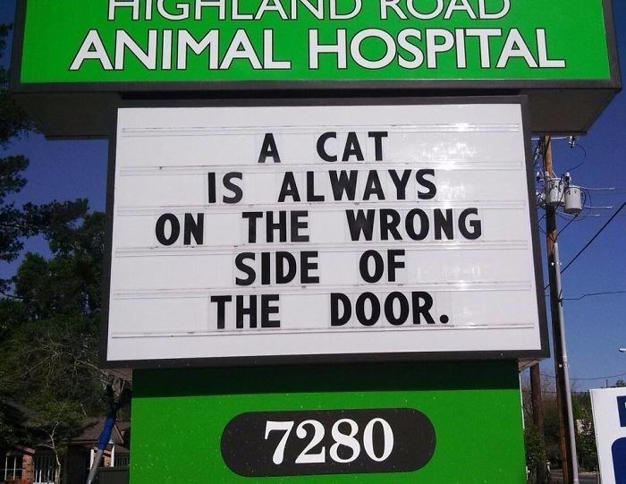 Street sign - ANIMAL HOSPITAL A CAT IS ALWAYS ON THE WRONG SIDE OF THE DOOR. 7280