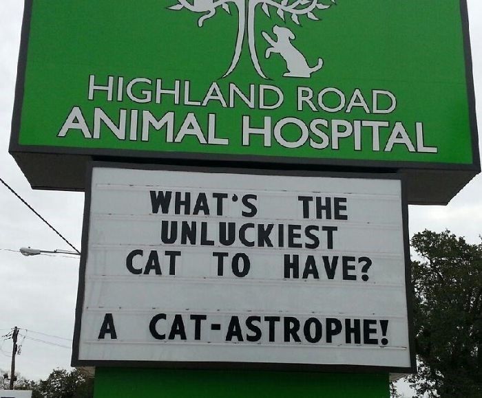 Street sign - HIGHLAND ROAD ANIMAL HOSPITAL WHAT S THE UNLUCKIEST CAT TO HAVE? A CAT-ASTROPHE!