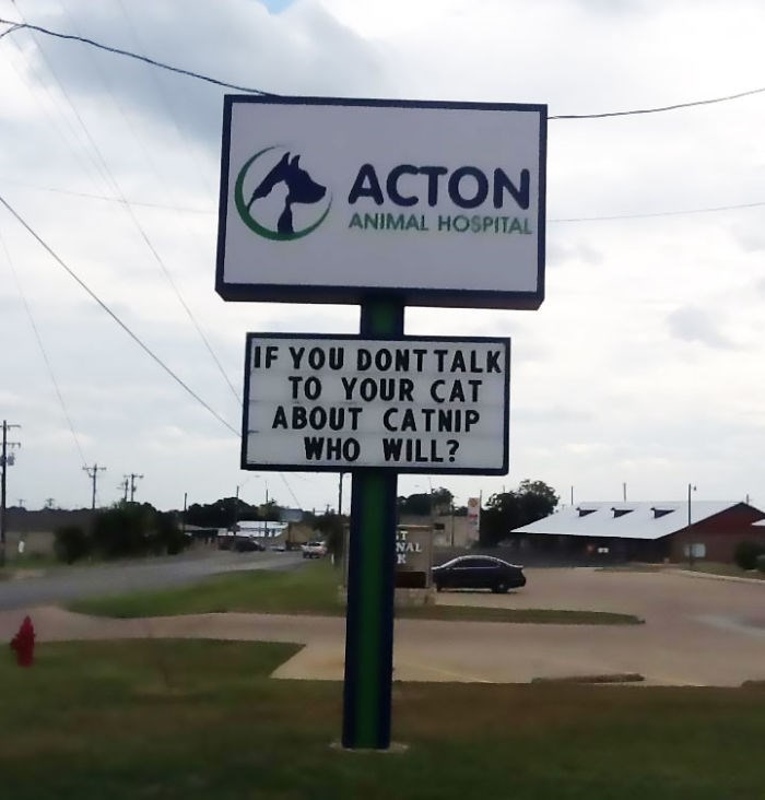 Street sign - ACTON ANIMAL HOSPITAL IF YOU DONTTALK TO YOUR CAT ABOUT CATNIP WHO WILL? NAL