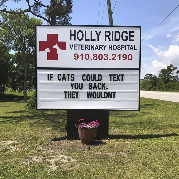 Sign - HOLLY RIDGE VETERINARY HOSPITAL 910.803.2190 IF CATS COULD TEXT YOU BACK THEY WOULDNT