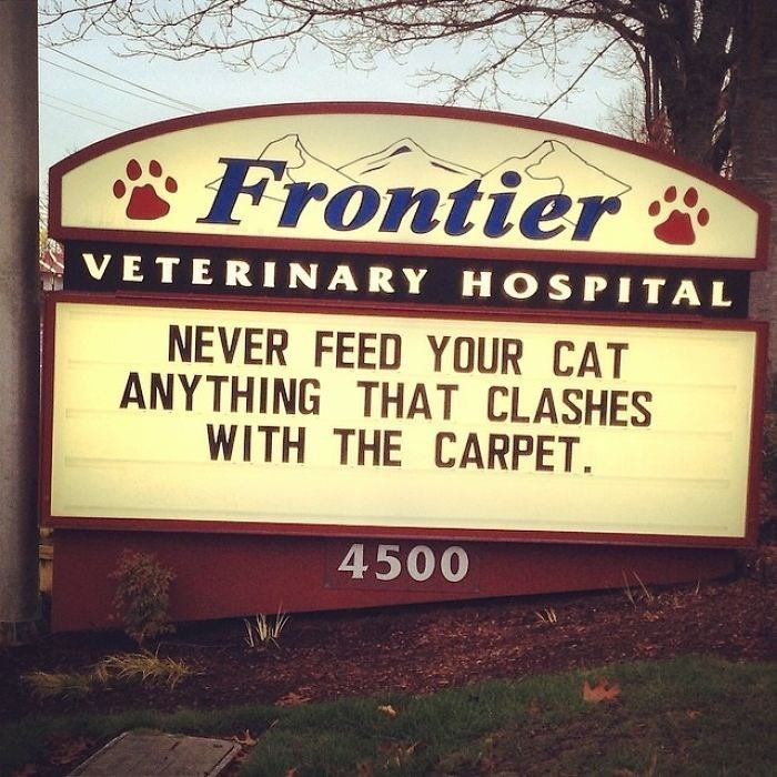 Font - Frontier VETERINARY HOSPITAL NEVER FEED YOUR CAT ANYTHING THAT CLASHES WITH THE CARPET 4500