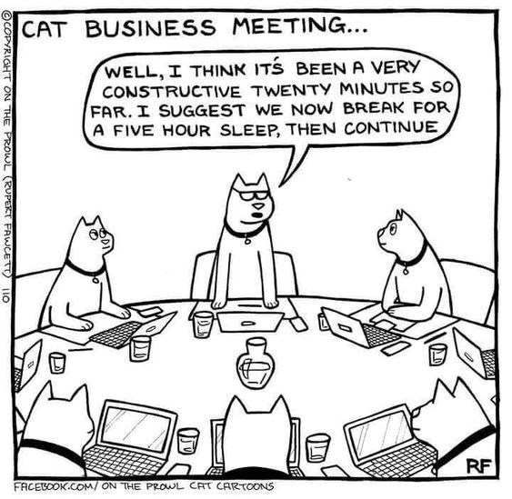 cat napping - Cartoon - CAT BUSINESS MEETING... WELL, I THINK ITS BEEN A VERY CONSTRUCTIVE TWENTY MINUTES SO FAR. I SUGGEST WE NOW BREAK FOR A FIVE HOUR SLEEP, THEN CONTINUE RF FACESOOK.COM/ ON THE PROWL CAT CARTOONS OCOPYRIGHT ON THE PROWL (RUPET FAWCETT 110