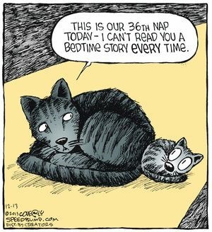 cat napping - Cat - THIS IS OUR 36TH NAP TODAY-1CAN'T READ YOU A BeDTIMe STORY EVËRY TIME. 7 n-13 SPEEDRUMP.com DISK CREATOas