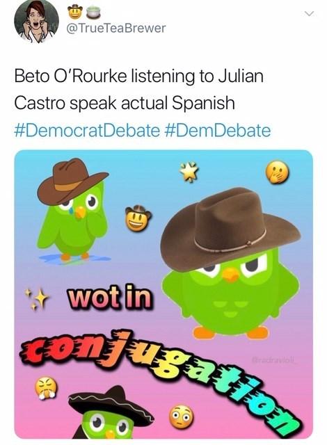 Cartoon - @TrueTeaBrewer Beto O'Rourke listening to Julian Castro speak actual Spanish #DemocratDebate #DemDebate wot in GOTJugation radraviol