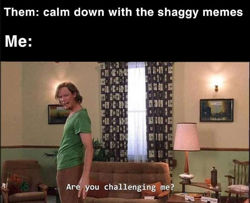 shaggy meme - Room - Them: calm down with the shaggy memes Me: 111 Are you challenging me?