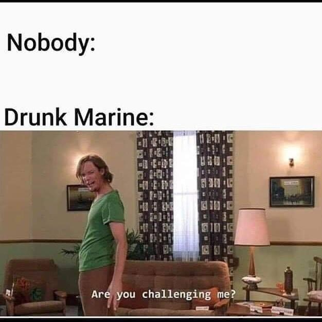 shaggy meme - Text - Nobody: Drunk Marine: Are you challenging me?