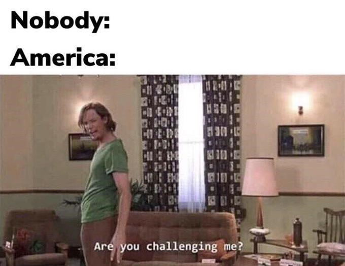 shaggy meme - Living room - Nobody: America: Are you challenging me?