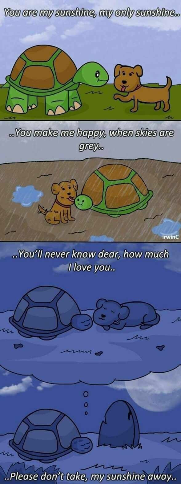 Memes - Tortoise - You are my sunshine, my only sunshine.. .You make me happy, when skies are greyo. irwinC .You'll never know dear, how much 1 love you.. Please don't take, my sunshine away. Oop