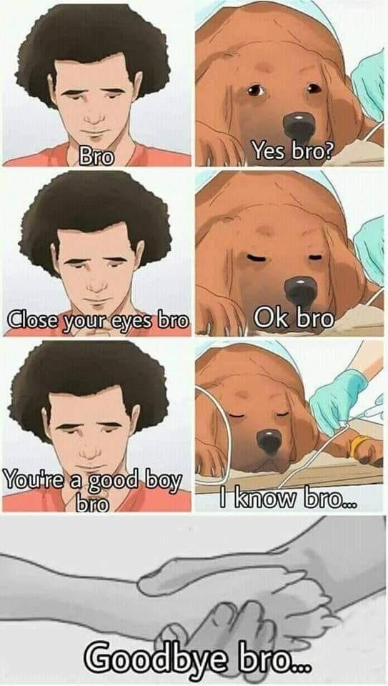 Face - Yes bro? Bro Ok bro Close your eyes bro Youtre a good boyknow br.. bто Goodbye br..