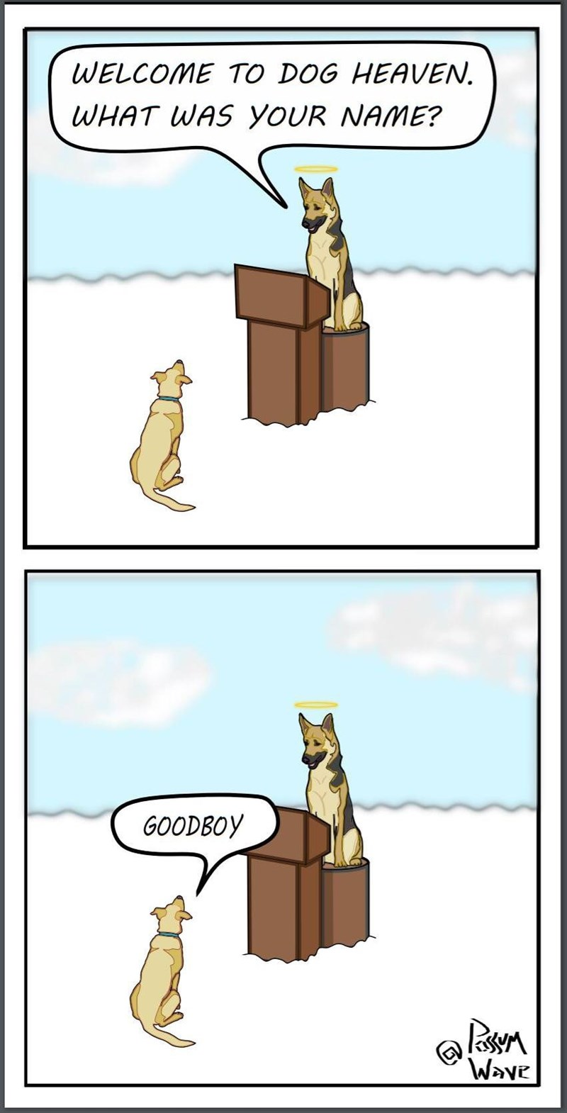Cartoon - WELCOME TO DOG HEAVEN WHAT WAS YOUR NAME? GOODBOY Wave