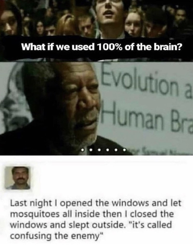 """shitpost - People - What if we used 100% of the brain? Evolution a CHuman Bra Last night I opened the windows and let mosquitoes all inside then I closed the windows and slept outside. """"it's called confusing the enemy"""""""