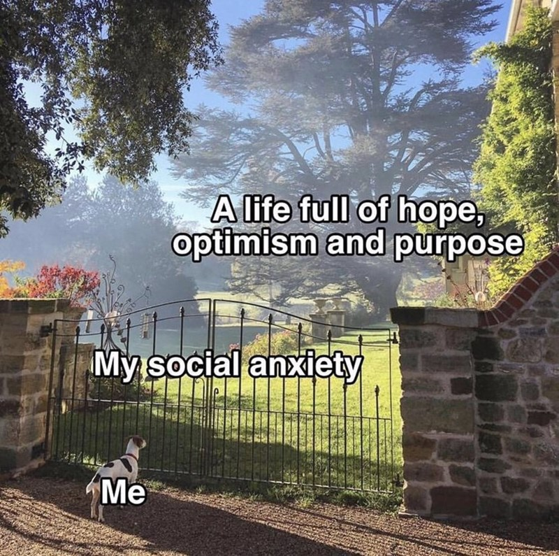 shitpost - Sky - Alife full of hope, optimism and purpose My social anxiety Me
