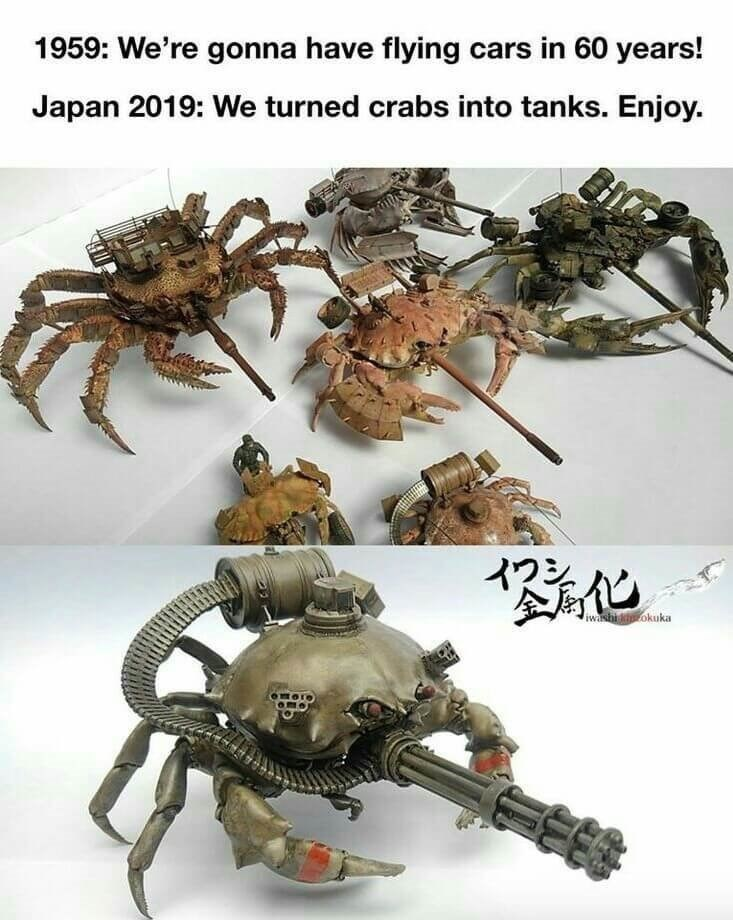 shitpost - Spider - 1959: We're gonna have flying cars in 60 years! Japan 2019: We turned crabs into tanks. Enjoy iwashi okuka