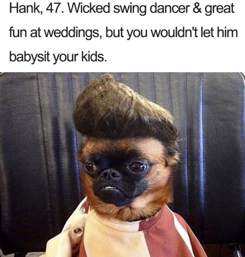 Pug bio - Hank, 47. Wicked swing dancer & great fun at weddings, but you wouldn't let him babysit your kids.
