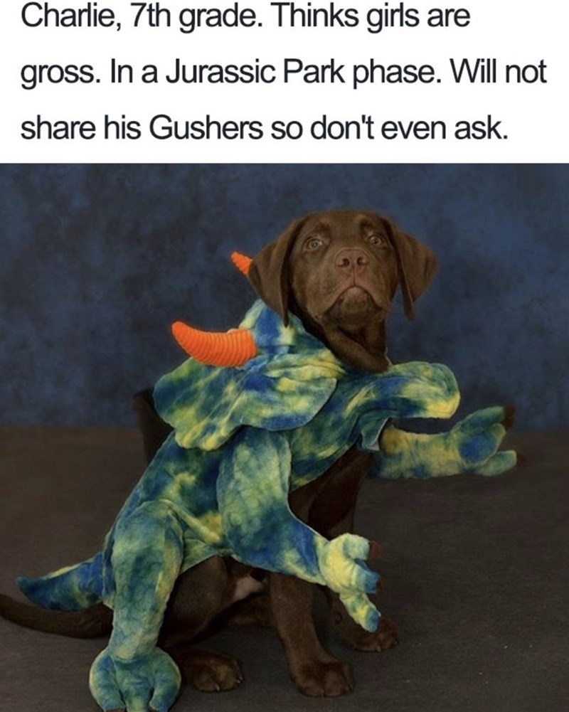 Canidae - Charlie, 7th grade. Thinks girls are gross. In a Jurassic Park phase. Will not share his Gushers so don't even ask.