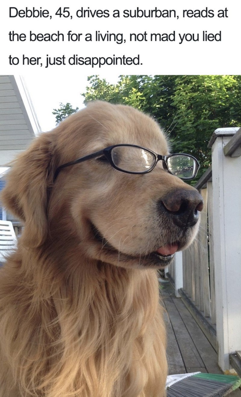Dog - Debbie, 45, drives a suburban, reads at the beach for a living, not mad you lied to her, just disappointed.