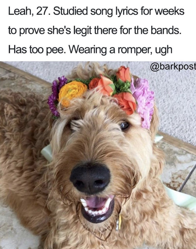 Dog bio - Dog - Leah, 27. Studied song lyrics for weeks to prove she's legit there for the bands Has too pee. Wearing a romper, ugh @barkpost