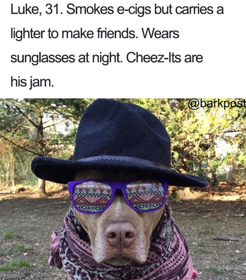 Dog bio - Hat - Luke, 31. Smokes e-cigs but carries lighter to make friends. Wears sunglasses at night. Cheez-Its are his jam. @barkpost