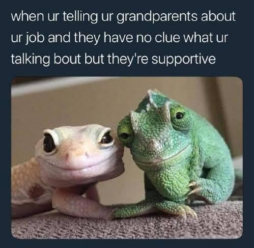 Organism - when ur telling ur grandparents about ur job and they have no clue what ur talking bout but they're supportive