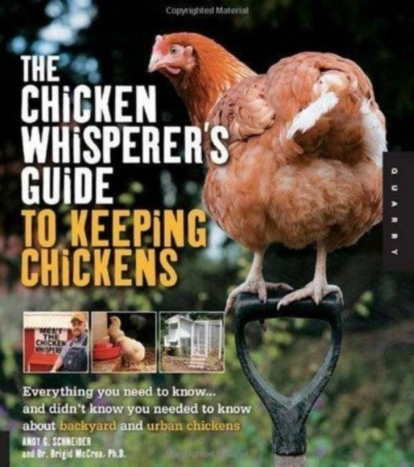 how to book - Bird - Copyrighted Material THE CHICKEN WHISPERER'S GUIDE TO KEEPING CHICKENS CHICKEN Everything you need to know... and didn't know you needed to know about backyard and urban chickens ANSY . SCHNEIDER and Dr. Brigid McCrea. Ph. OUAR RY